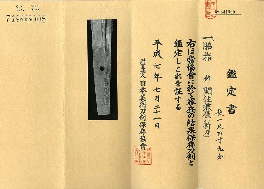 日本刀(脇差)関住兼辰(刀身2)