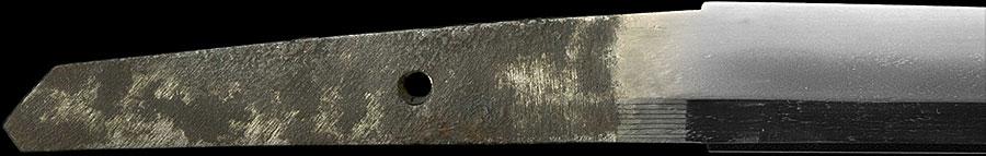 日本刀  新々刀海部(刀身1)