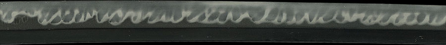 日本刀 越前住播磨大掾藤原重高(大阪の代表的名コレクター旧蔵品)
