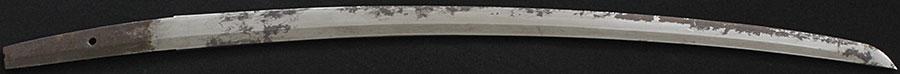 刀 不明(錆身)(添仕込み杖拵)
